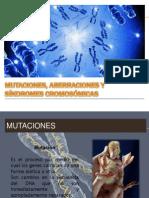Mutaciones, Aberraciones y Sindromes Cromosómicas