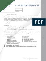 VM 091008 Ejecutivo Cuentas 01