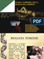 Biolgia Forense en Escena Del Crimen
