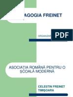 PEDAGOGIA FREINET