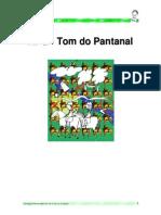Rpg Pantanal