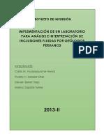Proyecto de Inversion_grupo 3