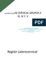 Diseccion de Cuello Grupos II Al V