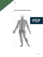 05.01-sinne_und_nervensysteme_und_stress.pdf