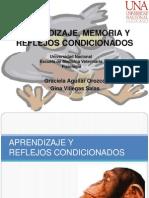 Aprendizaje, Memoria y Reflejos Condicionados -Seminario Fisio