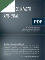Diapositivas EIA.