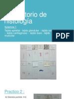 Laboratorio de Histología