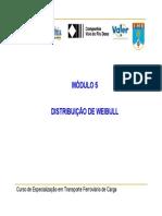 Mod5_Weibull2008