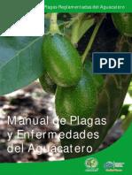 manualaguacateGuanajuato2012.pdf