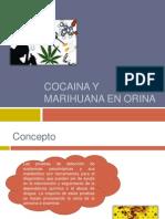 Cocaina y Marihuana en Orina