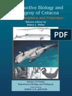 Reproductive Bilogy Phylogeny Cetacea