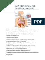 Anatomìa y Fisiologìa Del Aparato Respiratorio. Lorena Chimal.