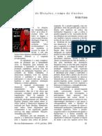 Tempo de Eleições Tempo de Ilusões Nildo Viana1