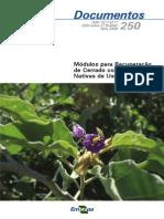 Modulos Para Recuperacao de Cerrado Com Especies Nativas de Uso Multiplo (1)