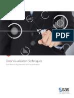 SAS Whitepaper Data Visualization Techniques