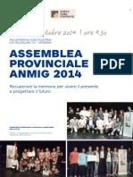 locandina assemblea 2014