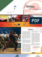Ruta Flamenca en La Costa Del Sol y Malaga v4 0