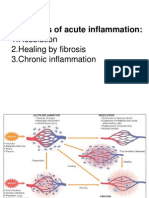 Chronic Inflammation - DA