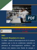 14. DBO y Cinetica