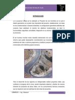 Informe II