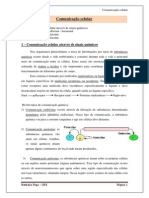 comunicaocelular-110302104638-phpapp01