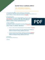 Sistema de evaluación Tarea Académica 2014.docx