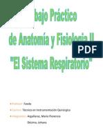 TP Anatomia
