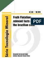 Froth Flotation