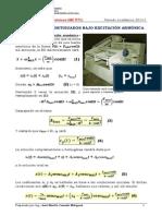 PULSACIONES.pdf