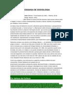 PESQUISA DE SOCIOLOGIA.docx