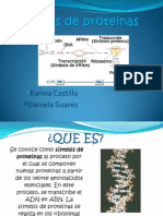 Sintesis de Proteinas.ppt.Karina Castillo