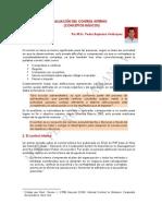 Evaluación Del Control Interno - PBV C-m