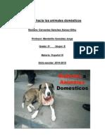 Maltrato Hacia Los Animales Domésticos