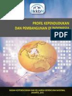 Profil Kependudukan Dan Pembangunan Di Indonesia Tahun 2013