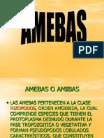 Amebas y Entamoeba Histolytica