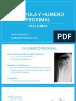 Escapula y Humero Proximal