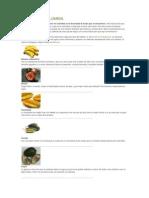 Frutas Exoticas de Colombia