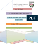 Grupos de Bacterias de Vias Respiratorias.