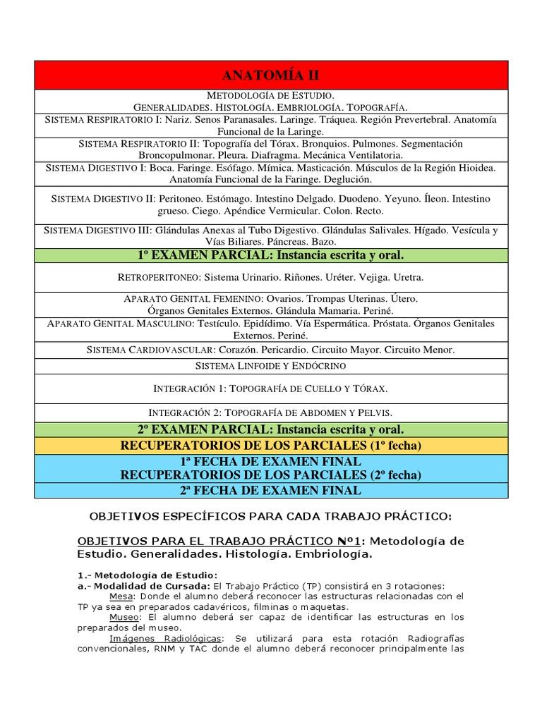 Anatomía II Programa