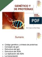 _sintesis de Proteinas i