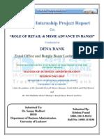 Summer Internship Report - Dena Bank