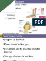Part 1 Skeletal System