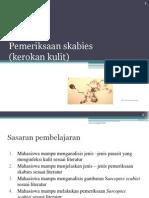 Pemeriksaan_skabies