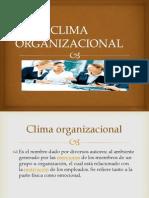 3. Cultura Organizacional