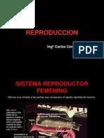 REPRODUCCION agronomia