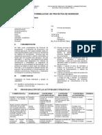 Silabo de Formulacion y Evaluación de Proyectos de Inversión