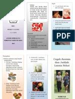 leafletanemia-140309094002-phpapp01