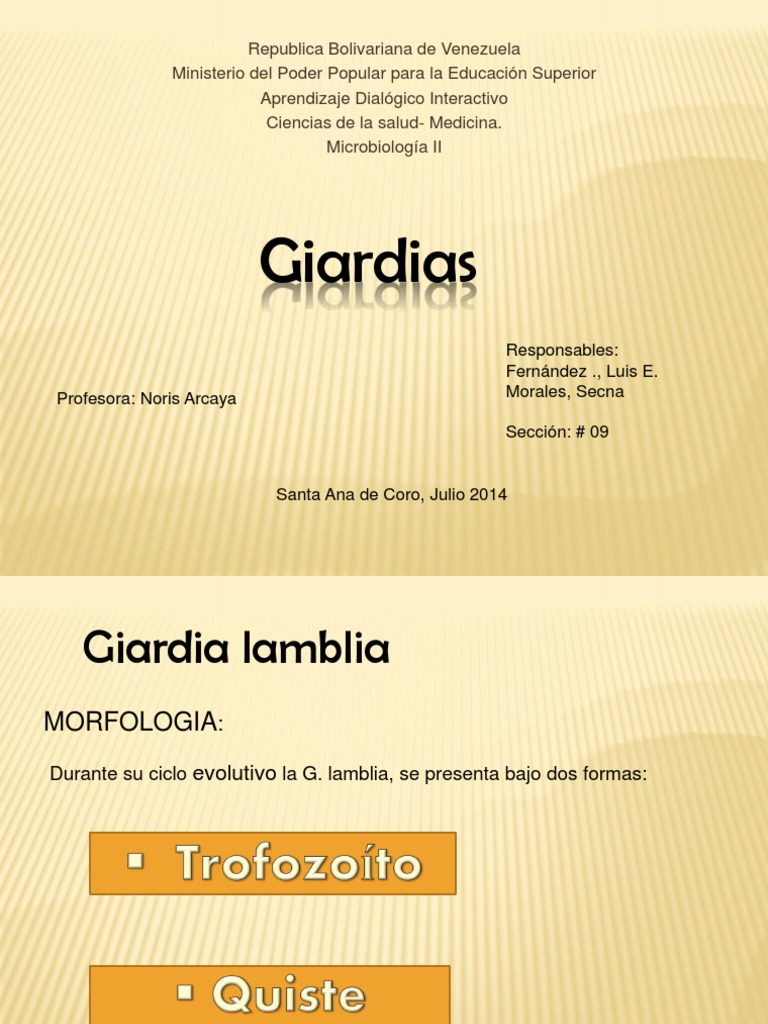 Dieta post giardia Giardia lamblia (Giardioza)- simptome și tratament