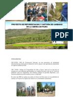 Reforestacion Captura de Carbono Piura