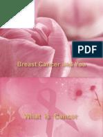 breastcancer-140220114523-phpapp02